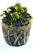 Bamboo Pot #687