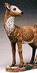 Mule Deer Doe #581